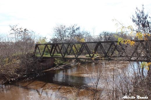 Puente ferroviario sobre el río Luján