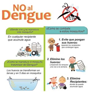 9-dengue