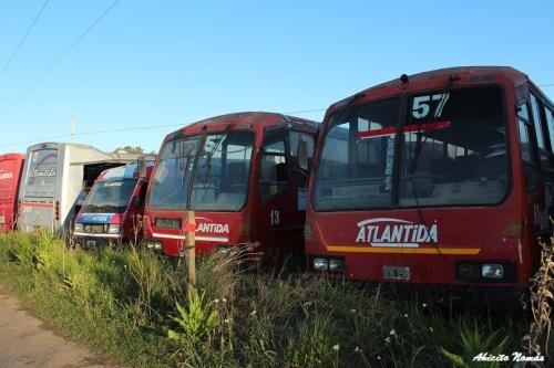 Cementerio Buses 2