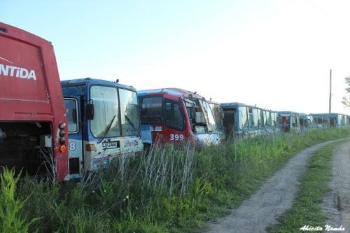 Cementerio Buses