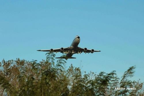 B747-8 DABYT saliendo sobre los arboles