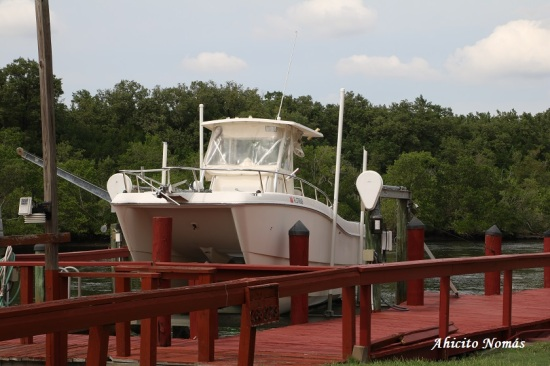 Embarcacion
