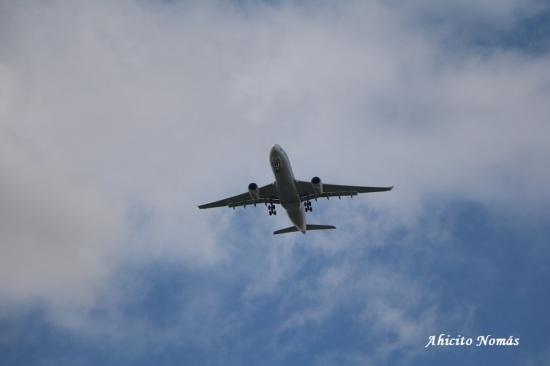 A330F Tampa