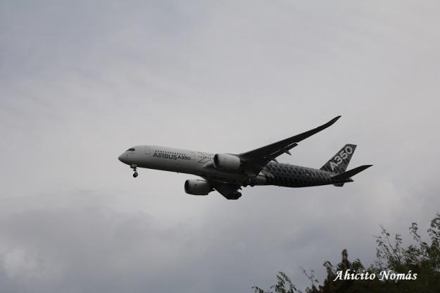 8 - A350 sale de los arboles