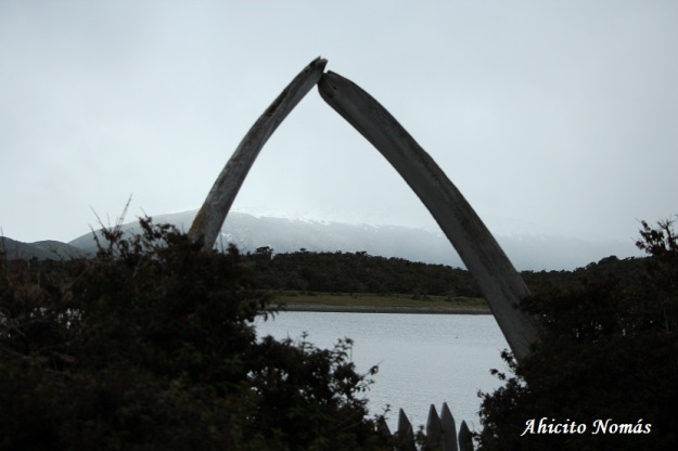 arco-dientes-de-ballena