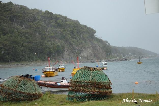 equipos-de-pesca